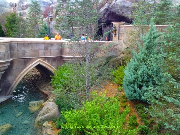 """""""enchanted forest in the magic kingdom"""""""