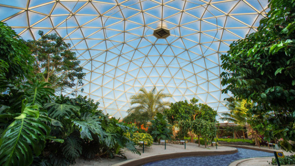 10 Things You Must Do at Epcot