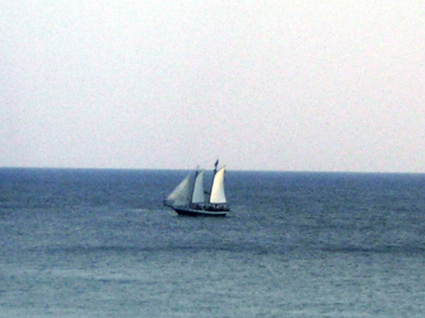 """Gulf of Mexico sailboat"""