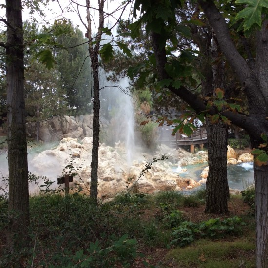 """geyser at grizzly peak"""