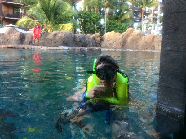 snorkeling in the pool