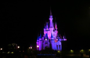 Disney Magic Kingdom Must Do List