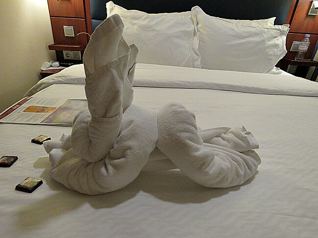 Towel origami rabbit with chocolates left for us on our bed.