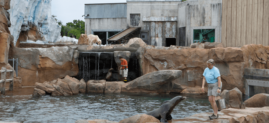 7 great reasons to visit the louisville zoo